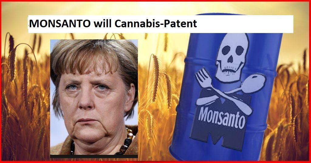 cannabis monsanto